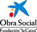 Fundación La Caixa (Se abrirá una ventana nueva)