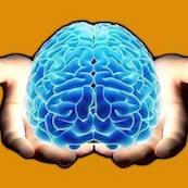 Logo Asociación Coruñesa de Epilepsia