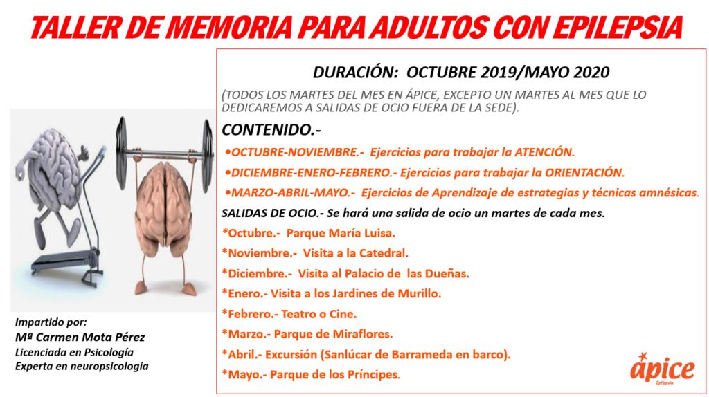 Programa del taller de adultos para mejorar la memoria.